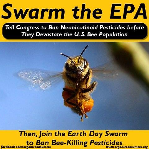 Swam the EPA