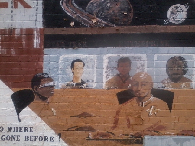 Star Trek Mural CLose Up Left