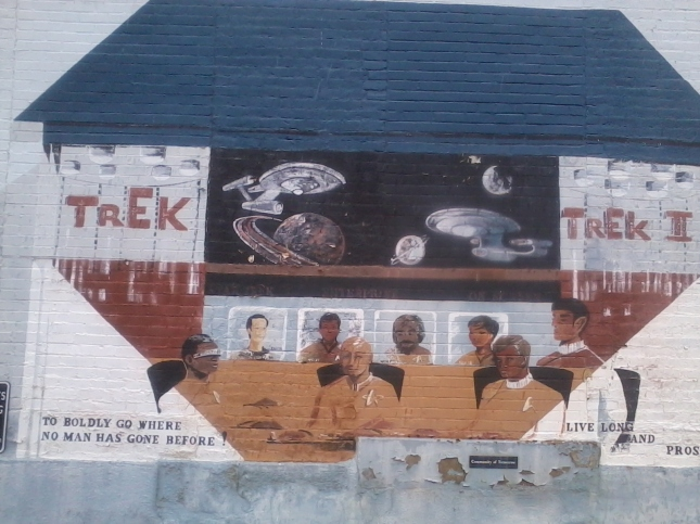 Star Trek Mural